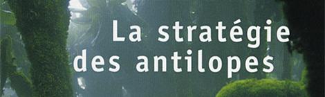 La stratégie des antilopes, Jean Hatzfeld (2007)