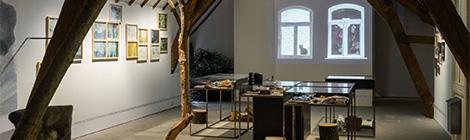12/10 au 8/1 — Anne Herbauts : Là où la forêt fait un bruit de mer — Exposition (photos)